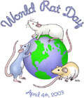 World Rat Day by Bella