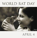 World Rat Day by Susan, Ann, & Emma